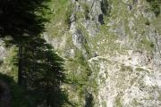 dllingerweg 1